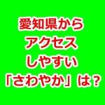 さわやかのハンバーグ!愛知県から近い店舗はココ!