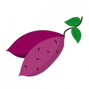 紫芋のイラスト