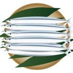 秋が旬の魚は?刺身や寿司にするならこの5種類がオススメ!